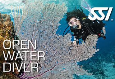 Curso Open Water Diver SSI