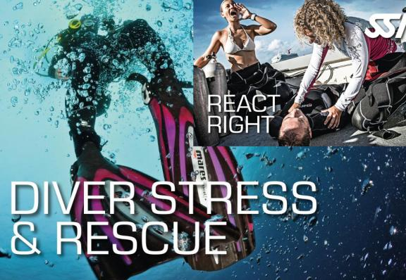 Pack Stress & Rescue + React Right