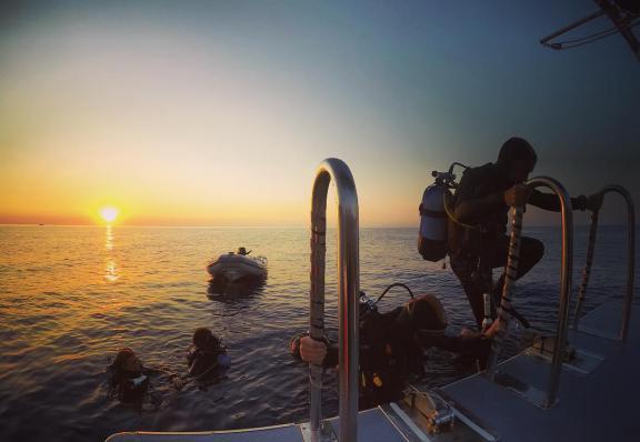 Sunrise dive